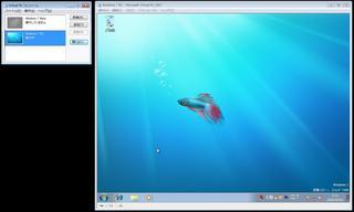 20090503_2.jpg